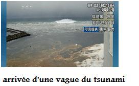 Fukushima Daiichi …   sortie du rapport d'analyse d'experts du parlement japonais .. dans Fukushia Daiichi Y4